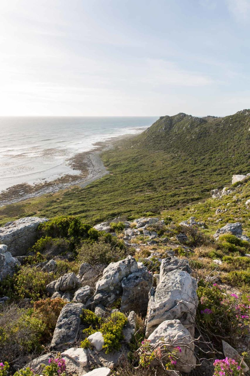 Cape-Town-South-Africa-Landscape-Table-Mountain-National-Park-natural-views