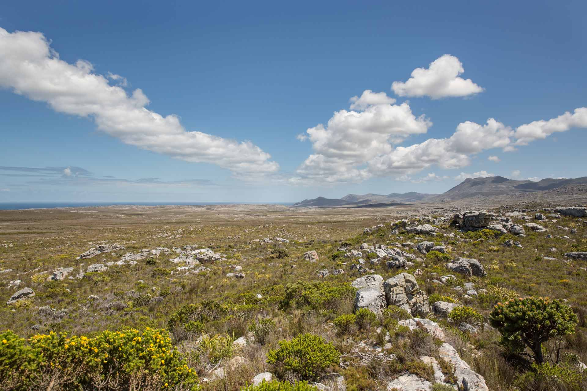 Cape Town - Table Mountain National Park