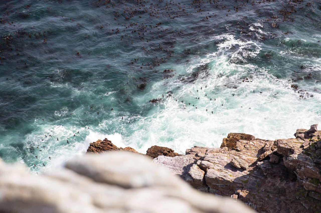 Cape-of-Good-Hope-Cape-Town-Natural-Views